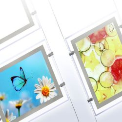 Custom Acrylic Signs & Prints | LED Acrylic Displays & Acrylic Signage in Oregon